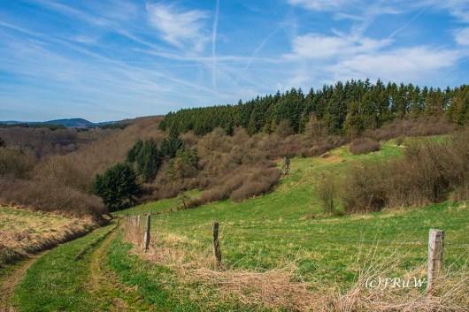 KirchwaldPanoramaweg (158)