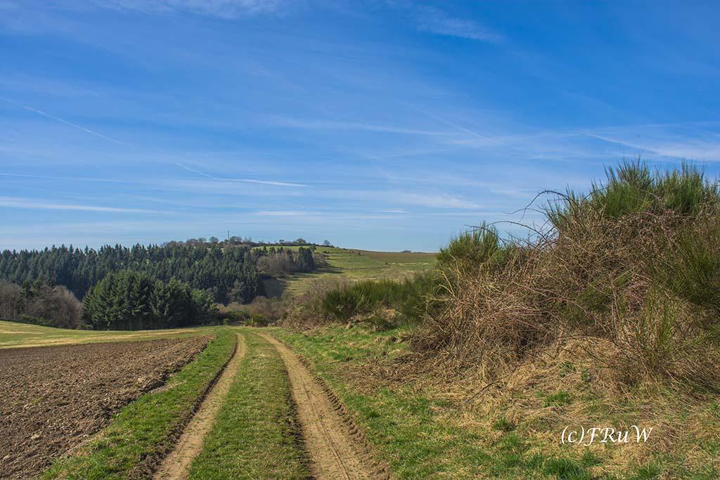 KirchwaldPanoramaweg (90)