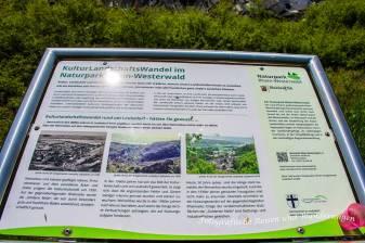 LZ01_LZ02_Rheinsteig-(10)-Bearbeitet