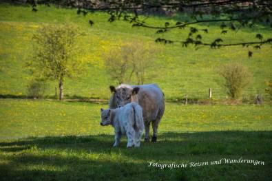 Tippeltour_DerSchatzimBerg-(93)-Bearbeitet