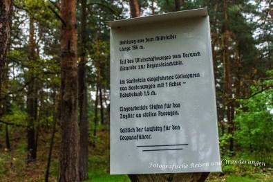 Regensteinruinen_MühleundSandhöhlen (13)