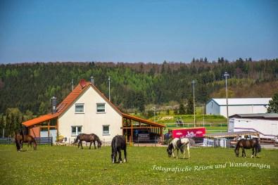 Runde_Allrode (3)-Bearbeitet