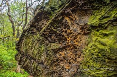 Felsen der Teufelsmauer