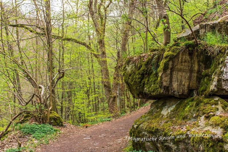 Felswände begleiten den Wanderweg im Bodetal