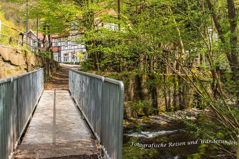 Bodetalrunde Thale Treseburgf (81)