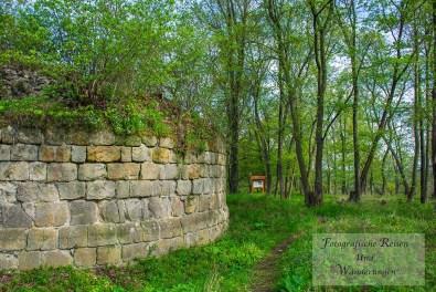 Am Burgfried Es ist geplant hier oben umfangreich frei zu schneiden