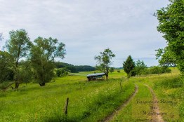 Mürmes- und Antoniusweg (10)