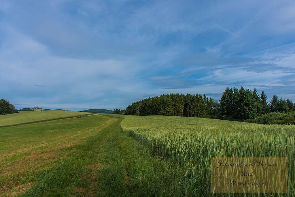 Felder wohin das Auge schaut