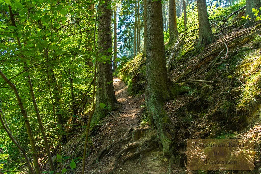 Sechs-Eichenrunde-Raßberg (109)