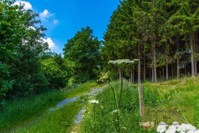 Sechs-Eichenrunde-Raßberg (91)
