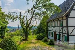 Tippeltour-Rund-um-Leichlingen (62)