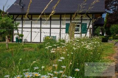 Tippeltour_Thier-nach-Wipperfürth (32)