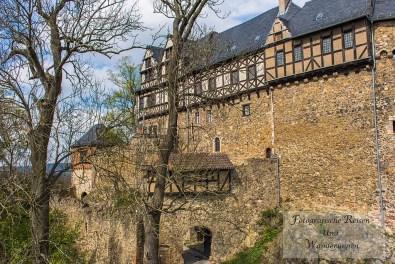 Umgebung Burg Falkenstein (33)