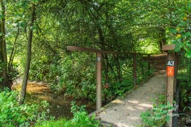 Brücke über den Olpebach