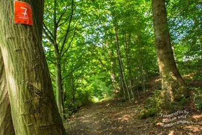 Denkmalweg (139)