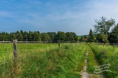 Denkmalweg (57)