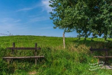 Denkmalweg (75)