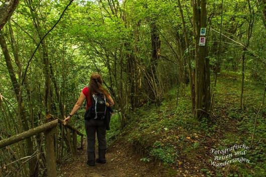 Weg hinunter zum Bildbachtal
