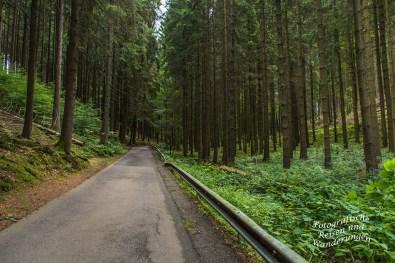 Oberbergischer Lutherweg (195)
