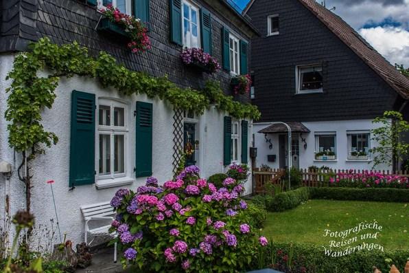 Sommerblüte vor den schmucken Häusern