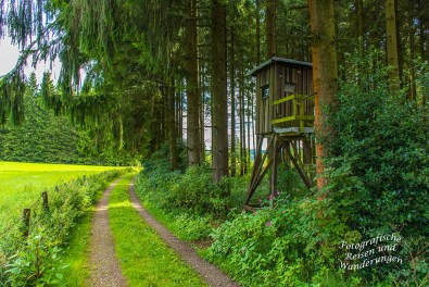Oberbergischer Lutherweg (66)