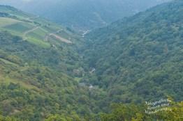 Blick in das Tal Richtung Oberwesel