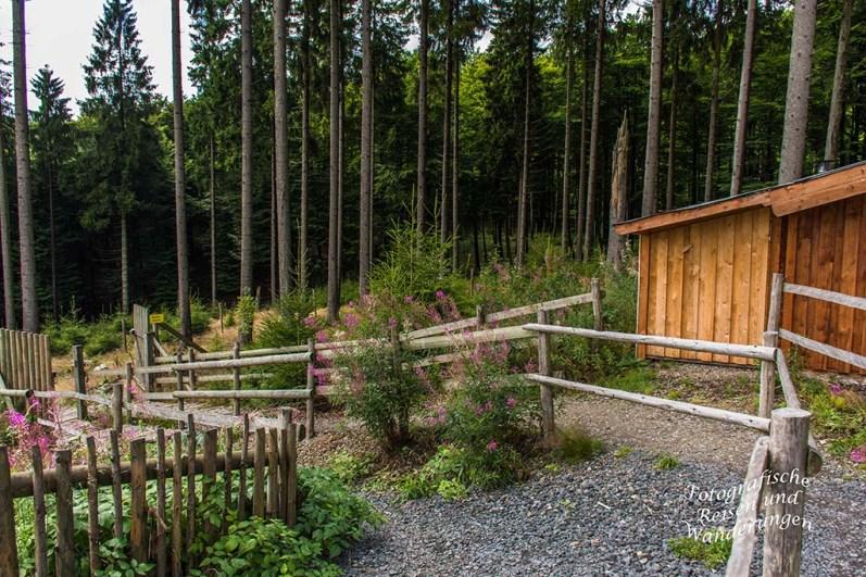 Eingang zum Naturerlebniszentrum Wisent-Welt