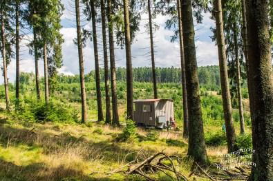 Schäferwagen im Naturerlebniszentrum Wisent-Welt