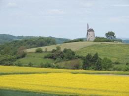 Blick auf die Windmühle Bavenhausen (c) Corinna Will Gemeinde Kalletal