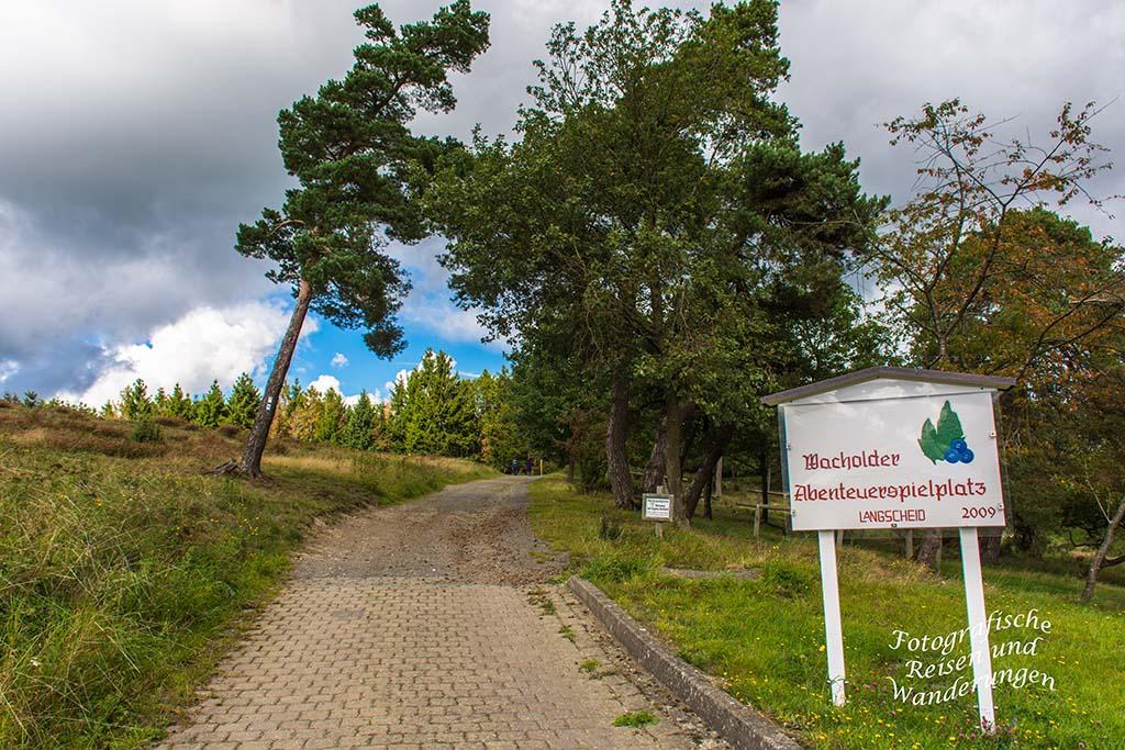 Traumpfädchen_Langscheider_Wacholderblick (8) Wacholder und Heide