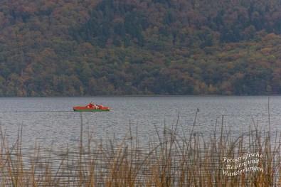 Boote auf dem Laacher See