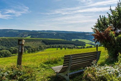 Blick in die unterschiedlichen Waldformen des Sauerlandes, nach Bewirtschaftung und Neuaufforstung