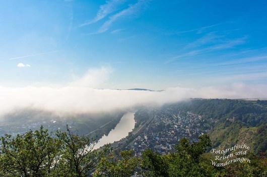 Nebel über der Mosel bei Kobern-Gondorf
