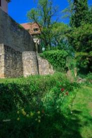 An der Werra - Umgebung Creuzburg (11)