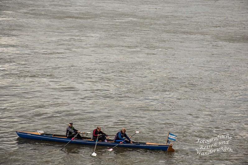 Kanuten auf dem Rhein