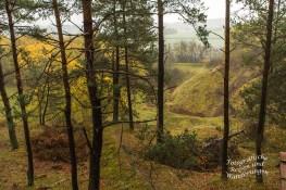 Blick vom Booser Eifelturm auf die urig erscheinenden Kuhlen in der Eifellandschaft