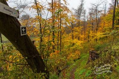 Die Kratertour gesellt sich zu unserem Weg, ebenfalls ein lokaler Wanderweg