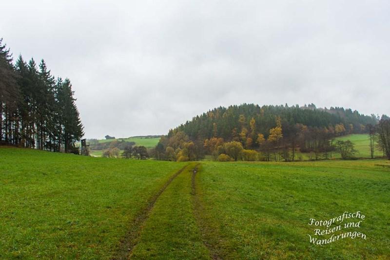Weg zum Nitzbach
