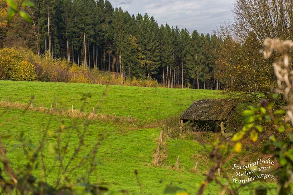 Turm_Route_Schloss-Homburg (137)