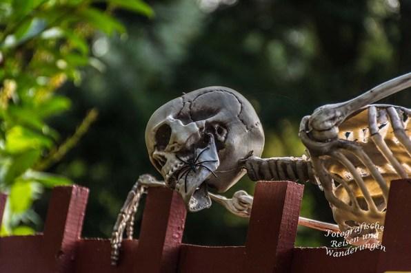 """Am Hasenacker liegen Reste herum, die mich vermuten lassen, dass die """"Peinliche Halsgerichtsordnung"""" noch nicht abgeschafft wurde. Oder waren das die Kangals?"""