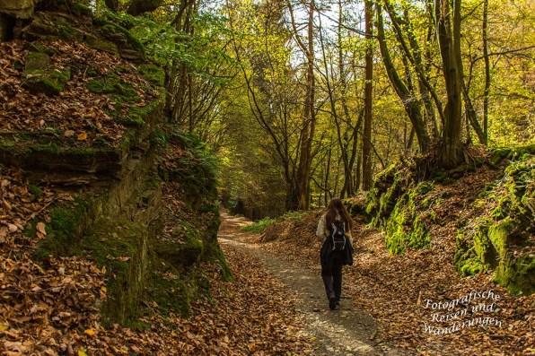 Waldweg, links hoch aufragende Felsen