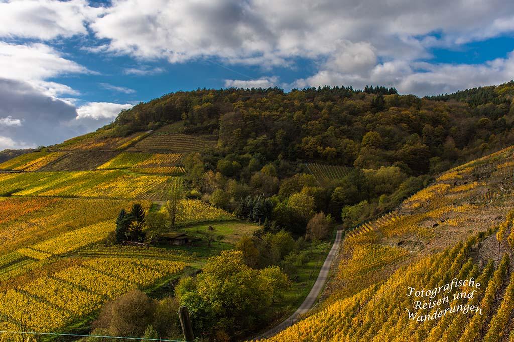 Blick in die Weinberge oberhalb Mayschoß