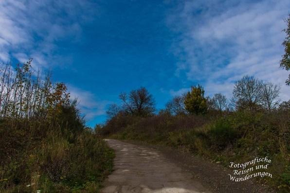 Aufwärts strebender Teerweg in den Weinbergen von Rech
