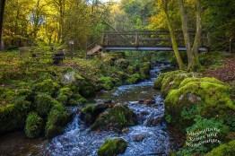 Brücke über den Hinterbach im Naturwaldreservat Veldenzerhammer