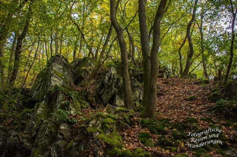 Felsformationen im Wald bei Veldenz