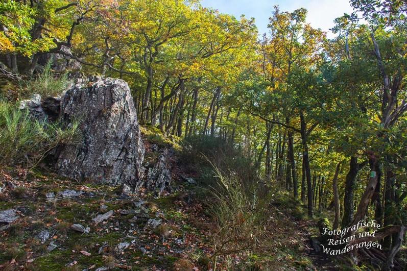 Felsformationen auf dem Mosel- Seitensprung Graf-Georg-Johannes Weg