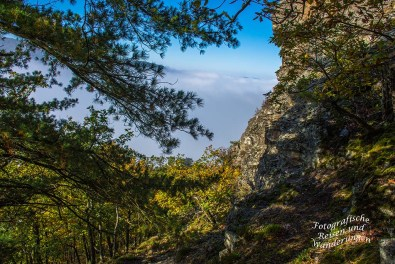 Dachslayer Felsen auf dem Mosel-Seitensprung Graf Georg Johannes Weg- Erkundung am Hang