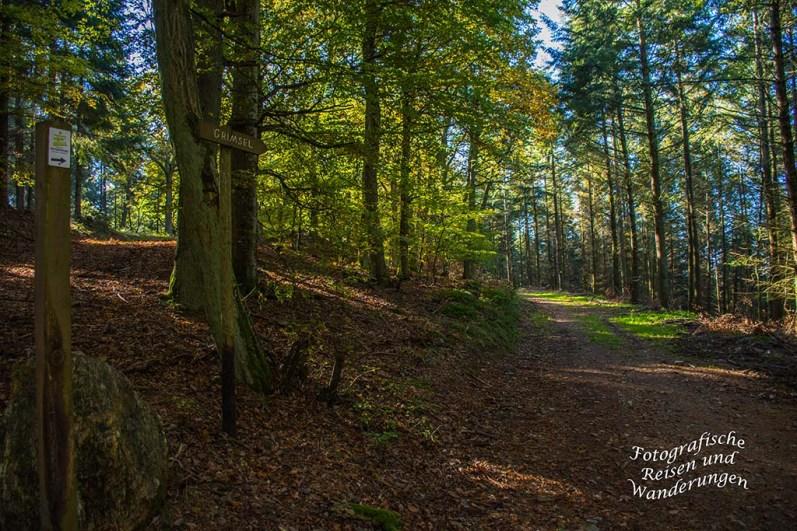 Waldwege Mosel-Seitensprung Graf Georg Johannes Weg