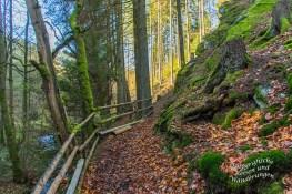 Gut gesicherter Hangweg oberhalb des Belgenbach