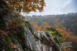 Traumpfad Nette Schieferpfad (30)